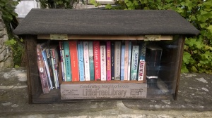 Little Free Library bookshelf