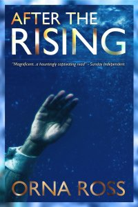Cover of After the Rising