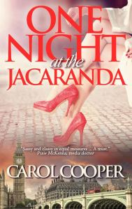cover of One Night at the Jacaranda